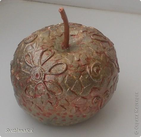 Представляю свое первое яблочко. Вот оно со всех сторон. фото 1