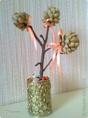 Мое фисташковое дерево в пуговичной вазе