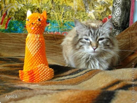 Ещё одна кошка фото 2