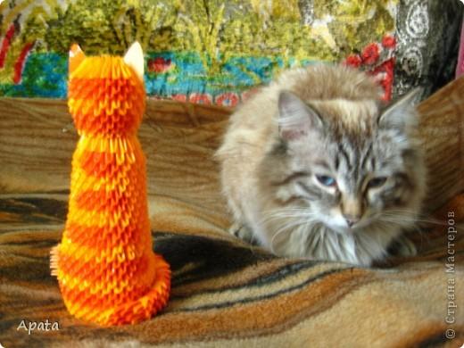 Ещё одна кошка фото 3