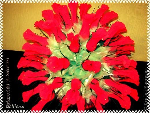 Здравствуйте уважаемые жители СМ!!!! Решила порадовать свою любимую свекровь сладким подарком на день рождение. В букете 57 роз. фото 3