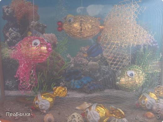 Добрый день! Кто хочет аквариум с рыбками, но не может себе позволить этого-сделайте сладкую альтернативу! И полюбоваться можно и съесть рыбок потом, даже не приготовив их! фото 11
