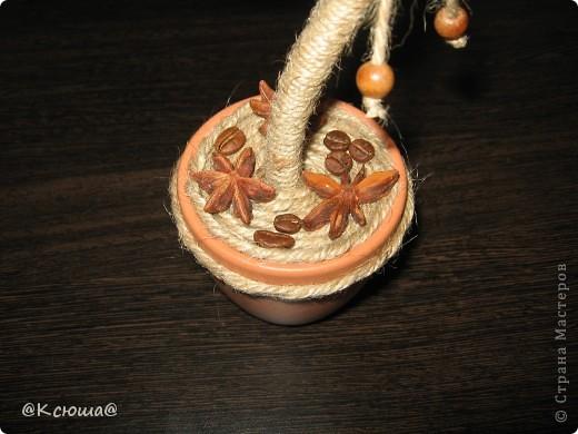 Всем привет! Вот снова кофейное дерево! Что то в последнее время как то затянули кофейные деревца!!!! Хочется делать и делать!!!!  фото 3