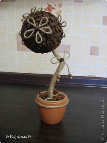 Всем привет! Вот снова кофейное дерево! Что то в последнее время как то затянули кофейные деревца!!!! Хочется делать и делать!!!!  фото 4