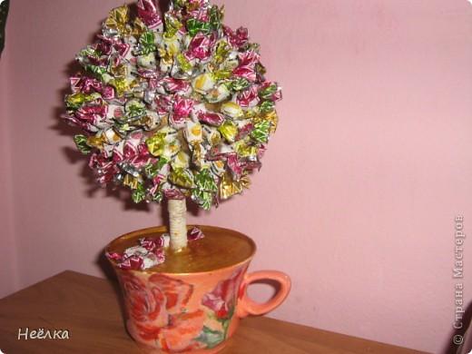 Мое кофейное дерево.кудаж я без него.У вас всех насмотрелась фото 2