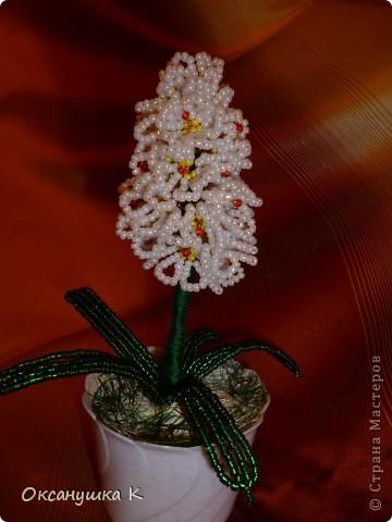 """Приветствую всех жителей и гостей замечательной Страны Мастеров! И представляю на ваш суд свои  попытки смастерить орхидеи. Так как от природы я ленивая, поэтому изобретала """"велосипед"""" сама. Бисер взяла какой был в наличии, и теперь у меня голубые орхидеи. Строение цветка тоже не совсем соответствует их истинному строению. Отсюда и название моих цветов.  Да, и еще цвести они только начинают,  у меня молоденькие экземпляры) Совместное фото . Фотоаппарат у меня новый ( для себя любимой купила) и в нем есть такая функция, что можно рамочки подбирать. Этот вид рамочек показался мне наиболее подходящим... фото 6"""