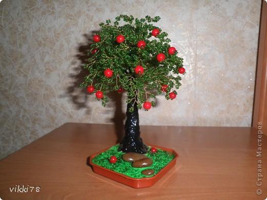 ещё одна яблонька фото 1