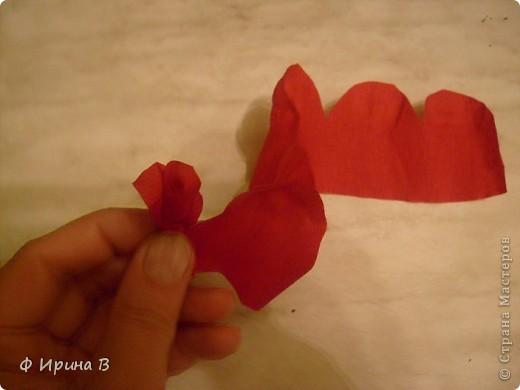 Вот такой Топиарий у меня получился к моему дню рождения))) фото 6