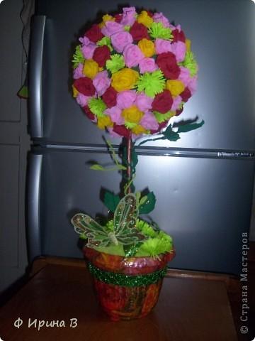 Вот такой Топиарий у меня получился к моему дню рождения))) фото 1