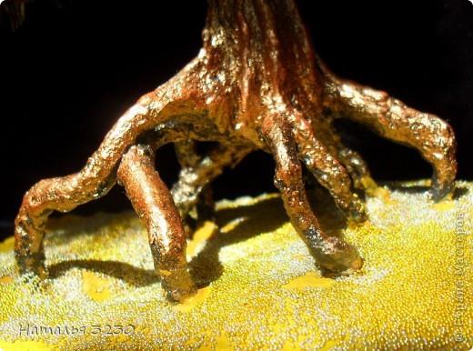 """Я живу рядом с уникальным озером-Байкал.Наверное все много про него знают,поэтому не буду утомлять подробностями,скажу только,что есть на Байкале бухта """"Песчанная""""-один из самых неповторимых уголков озера.Её берег усыпан чистейшим светло-желтым песком.Здесь растут знаменитые """"ходульные"""" деревья,из-под которых ветер и вода вымывают и выдувают песчанную почву.на данное время таких деревьев осталось всего несколько. фото 3"""