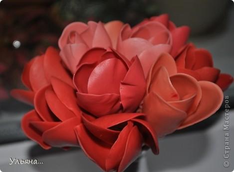 Крокусы из Thai Clay фото 5