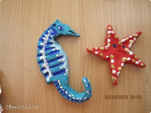 морская звезда 1 класс фото 5