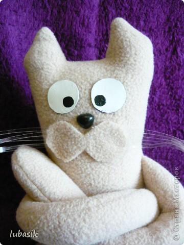 Давайте знакомиться_ я кот Фёдор. Появился по СП, http://stranamasterov.ru/node/381872#comment-4511507 который пройдёт до 5 июля. фото 2