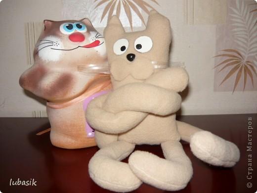 Давайте знакомиться_ я кот Фёдор. Появился по СП, http://stranamasterov.ru/node/381872#comment-4511507 который пройдёт до 5 июля. фото 6
