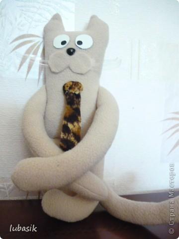 Давайте знакомиться_ я кот Фёдор. Появился по СП, http://stranamasterov.ru/node/381872#comment-4511507 который пройдёт до 5 июля. фото 7