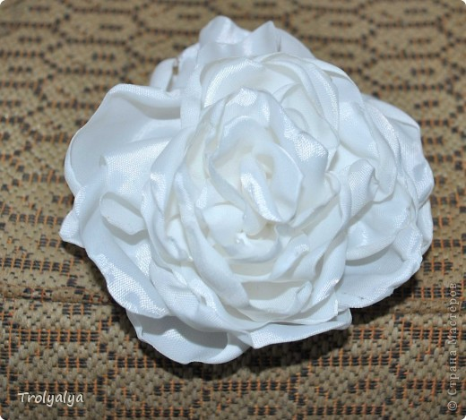 роза за час) фото 1