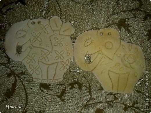Слонопотамики фото 1