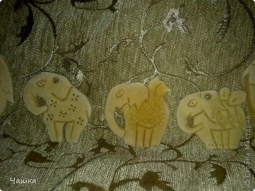 Слонопотамики фото 2