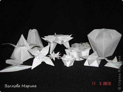 Наконец-то решила показать свои работы по оригами. Делала их давно. Люблю складывать из бумаги. Для меня это своеобразные головоломки. А всякого рода головоломки я очень люблю. За это время набралась вот такая коллекция. фото 2