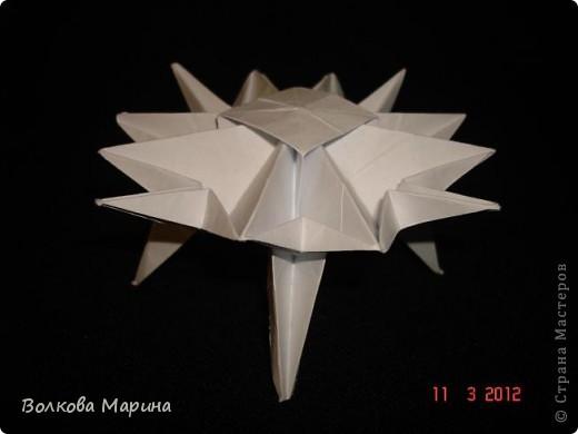 Наконец-то решила показать свои работы по оригами. Делала их давно. Люблю складывать из бумаги. Для меня это своеобразные головоломки. А всякого рода головоломки я очень люблю. За это время набралась вот такая коллекция. фото 13