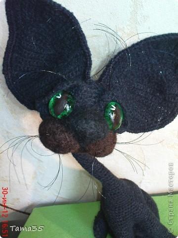 Котик связан крючком. Носик и щеки валяные. фото 2