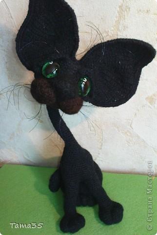 Котик связан крючком. Носик и щеки валяные. фото 1