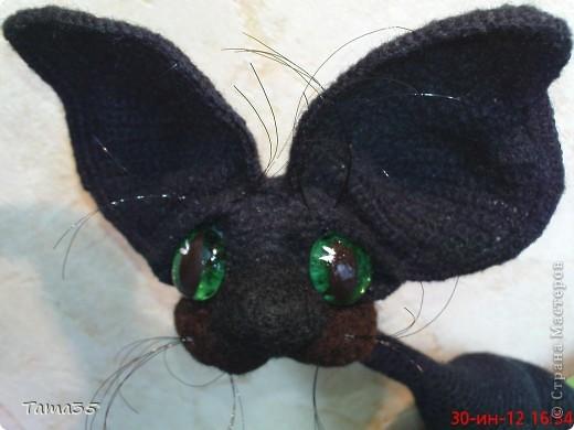 Котик связан крючком. Носик и щеки валяные. фото 3