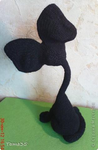 Котик связан крючком. Носик и щеки валяные. фото 10