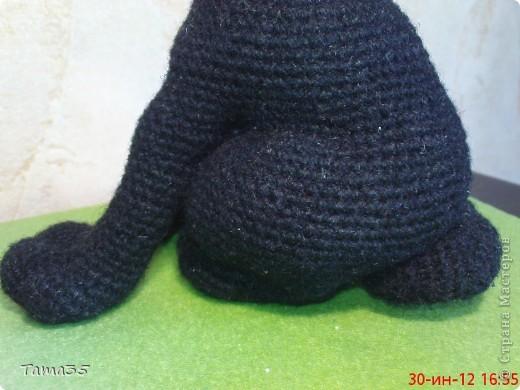 Котик связан крючком. Носик и щеки валяные. фото 9