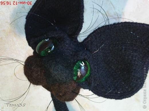 Котик связан крючком. Носик и щеки валяные. фото 4