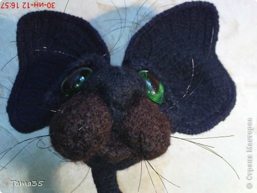 Котик связан крючком. Носик и щеки валяные. фото 5