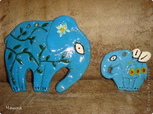 Слонопотамики фото 7