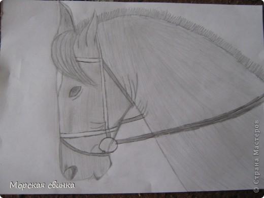 Здравствуйте, мастера и мастерицы. Сегодня и расскажу вам как просто нарисовать коня карандашом. фото 5