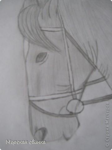 Здравствуйте, мастера и мастерицы. Сегодня и расскажу вам как просто нарисовать коня карандашом. фото 6