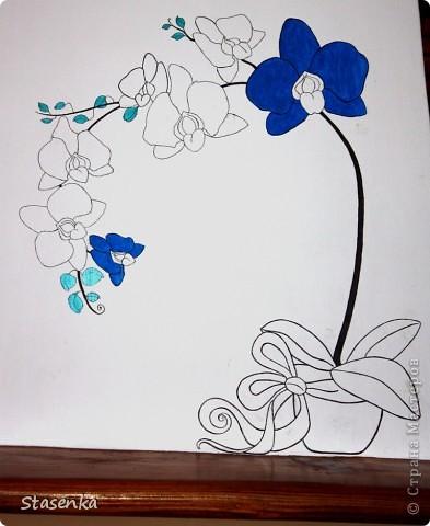 Вот такая у меня необычная орхидея))) фото 2
