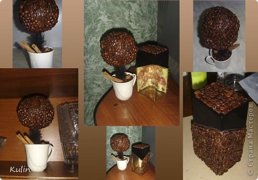 очень захотелось иметь у себя ароматное кофейное деревце,а тут как раз кофе растворимый закончился,и баночка освободилась, вот и получился комплект ароматный Кофедерево и Кофебаночка фото 1