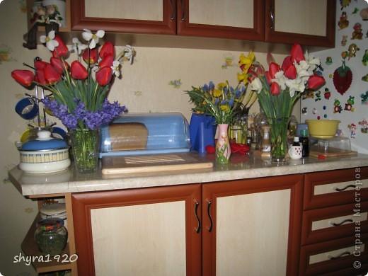 Я не шутила, когда писала, что роз у меня было 50 кустов. фото 4