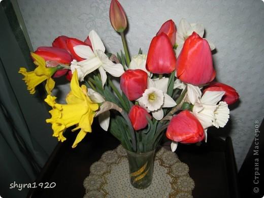 Я не шутила, когда писала, что роз у меня было 50 кустов. фото 5