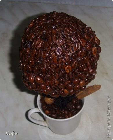 очень захотелось иметь у себя ароматное кофейное деревце,а тут как раз кофе растворимый закончился,и баночка освободилась, вот и получился комплект ароматный Кофедерево и Кофебаночка фото 2