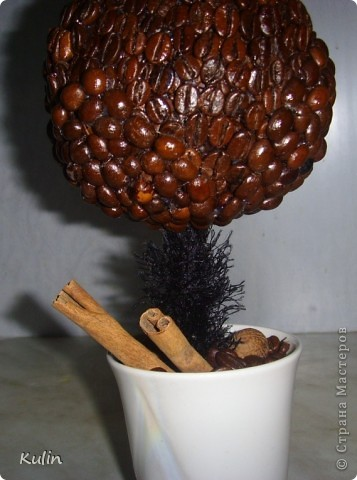очень захотелось иметь у себя ароматное кофейное деревце,а тут как раз кофе растворимый закончился,и баночка освободилась, вот и получился комплект ароматный Кофедерево и Кофебаночка фото 3