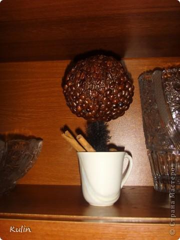 очень захотелось иметь у себя ароматное кофейное деревце,а тут как раз кофе растворимый закончился,и баночка освободилась, вот и получился комплект ароматный Кофедерево и Кофебаночка фото 8
