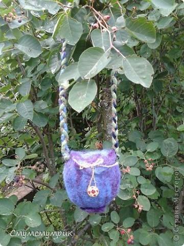 Добрый день,жители СМ.я к вам с новыми ягодными сумками,очень мне они нравятся,а как нравятся Лизухе,не передать,она с ними спит как с игрушками.ННадеюсь и вам они понравятся!Приятного просмотра. Первая ягодка -черничка фото 1