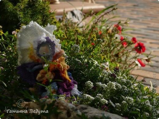 3 мои работы вместе -проект ландшафта , его исполнение- высадка растений  и ангелы  фото 14