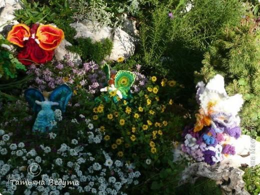 3 мои работы вместе -проект ландшафта , его исполнение- высадка растений  и ангелы  фото 2