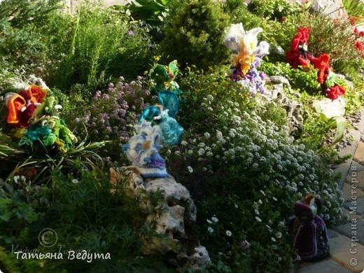 3 мои работы вместе -проект ландшафта , его исполнение- высадка растений  и ангелы  фото 3