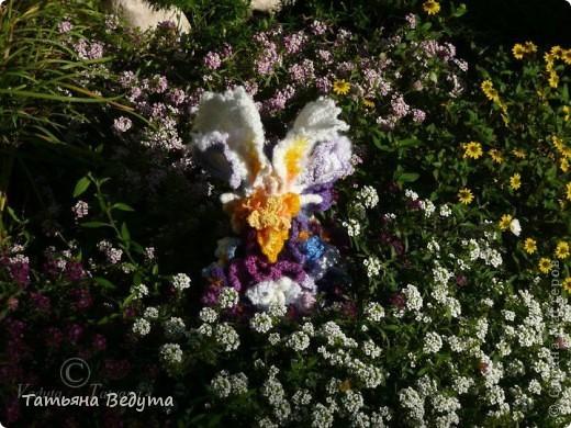 3 мои работы вместе -проект ландшафта , его исполнение- высадка растений  и ангелы  фото 17