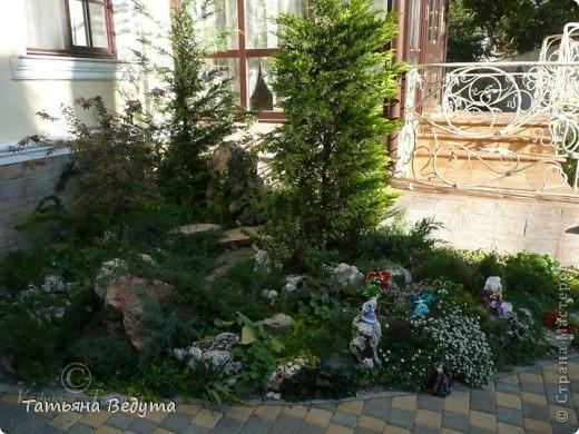 3 мои работы вместе -проект ландшафта , его исполнение- высадка растений  и ангелы  фото 5