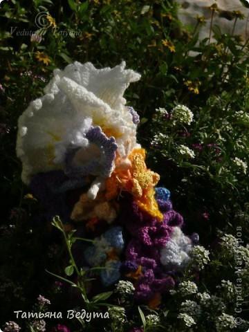 3 мои работы вместе -проект ландшафта , его исполнение- высадка растений  и ангелы  фото 19