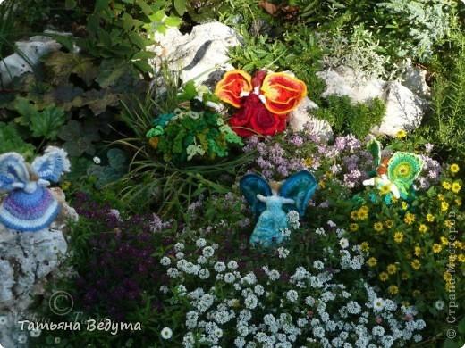 3 мои работы вместе -проект ландшафта , его исполнение- высадка растений  и ангелы  фото 8