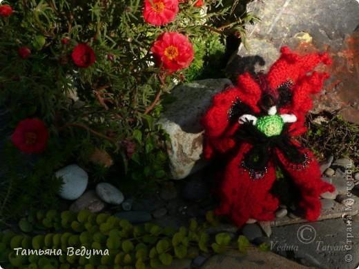 3 мои работы вместе -проект ландшафта , его исполнение- высадка растений  и ангелы  фото 20